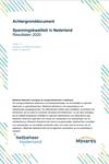 Achtergronddocument spanningskwaliteit in Nederland 2020